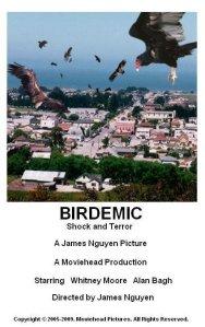birdemicshockandterror2008a