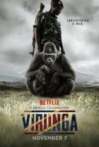 virunga2014a